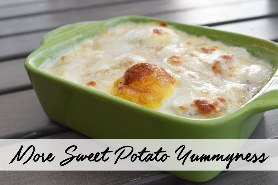 More Sweet Potato Yummyness